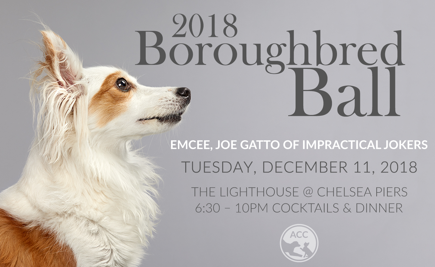 ACCBoroughbredBallSavetheDate.jpg